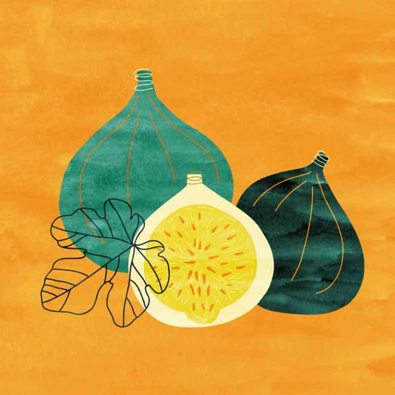 illustration de cuisine fruits figues